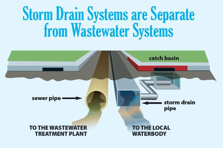 Graphic showing how storm drain systems are separate from wastewater systems and storm water goes to the local water body not a treatment plant