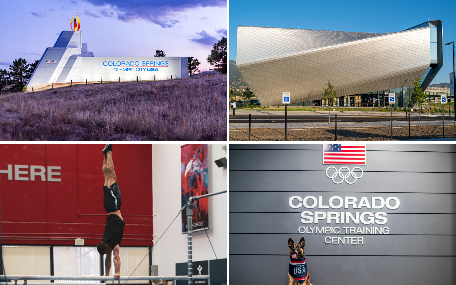 collage of four photos. Olympic City USA sign entering Colorado Springs, The U.S. Olympic and Paralympic museum, a gymnast working on the parallel bars, and a German shepherd in front of the sign at the U.S. Olympic and Paralympic training center