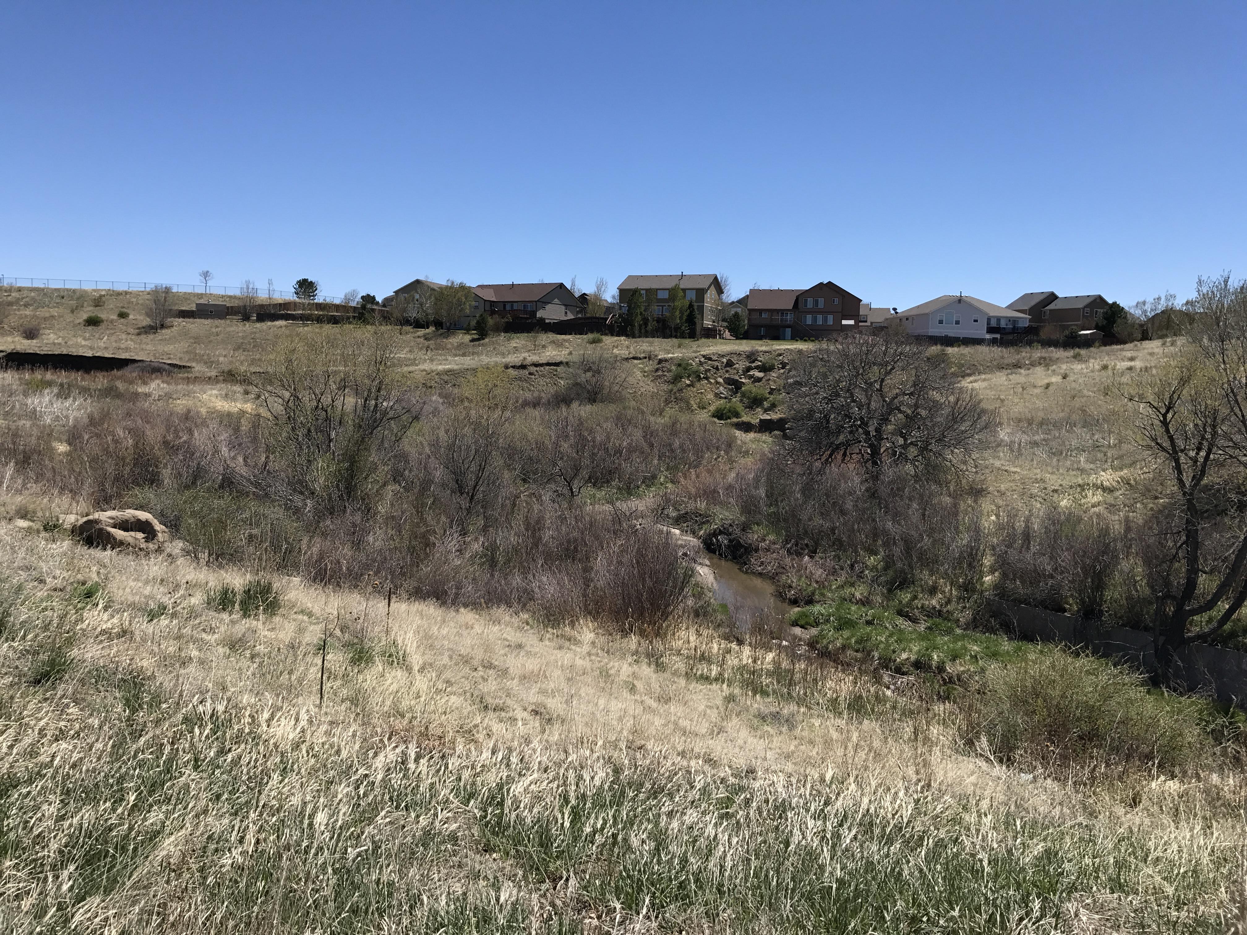grassy tributary along Rangewood. Before photo