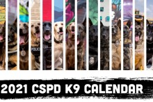 Canine Pictures Banner