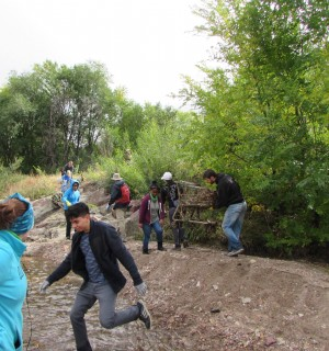 volunteers cleaning up a creek
