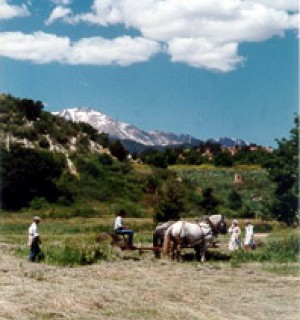 Historical Rock Ledge Ranch horses