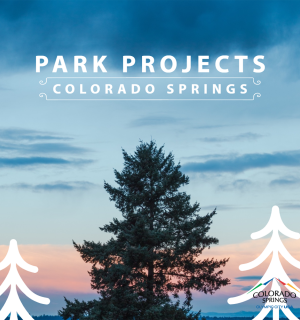 "tops of pine trees against a colorful sky. ""Park Projects Colorado Springs"""