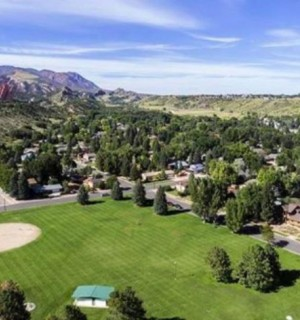 An aerial view of the tree canopy in Colorado Springs