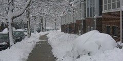 Snowy Sidewalk on a Colorado Springs Street