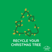 "clip art chistmas tree. ""recycle your christmas tree"""