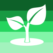 graphic leaf on green background