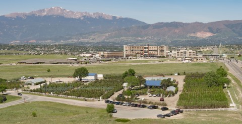 aerial view of tree nursery with pikes peak in the background
