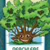example of tree card