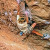 man climbing on rocks. Chalk is caked on the rock where the multiple handholds are.