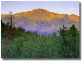 pikes peak rising above the trees