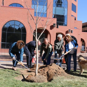 Mayor John Suthers and other city leasers shovel dirt around a newly planted tree.