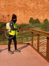 Park staff member applying disinfectant on railing