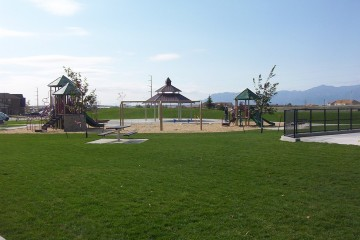lush green field with playground in the background