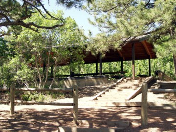 steps leading to picnic pavilion in wooded area