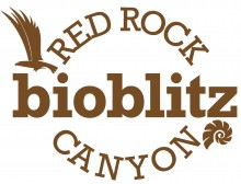 logo for red rock canyon bioblitz